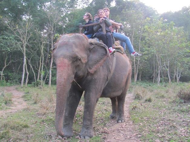 sophie sur un elephant
