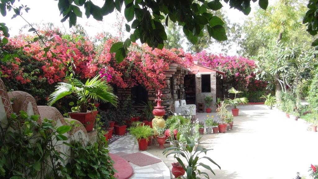 Charmante guesthouse à Mandore