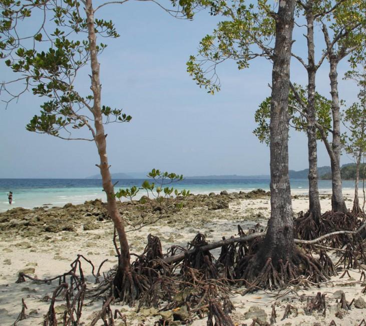 excurison dans les îles Andaman
