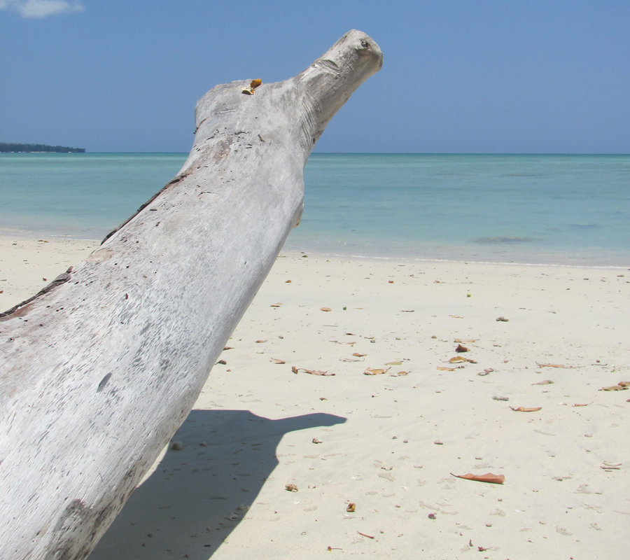 Les plages paradisiaques des îles Andaman