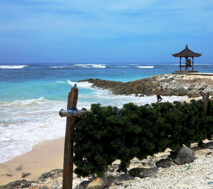 Vue sur la plage - Bali