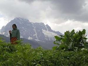 Au Cachemire