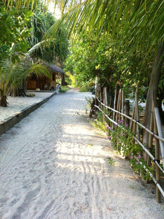 Promenade le long des plages