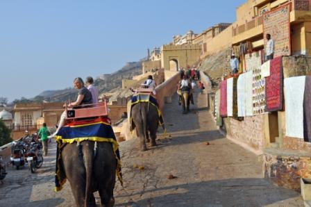 Rajashan_Jaipur_Amber fort_Elephant ride