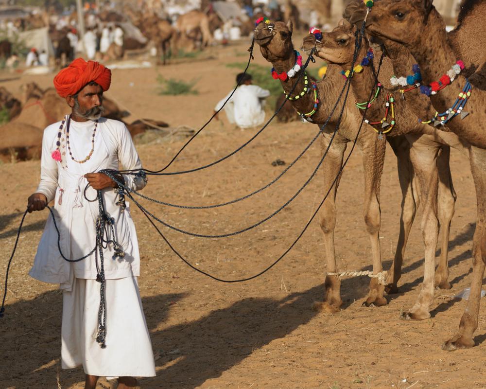 Foire de Pushkar