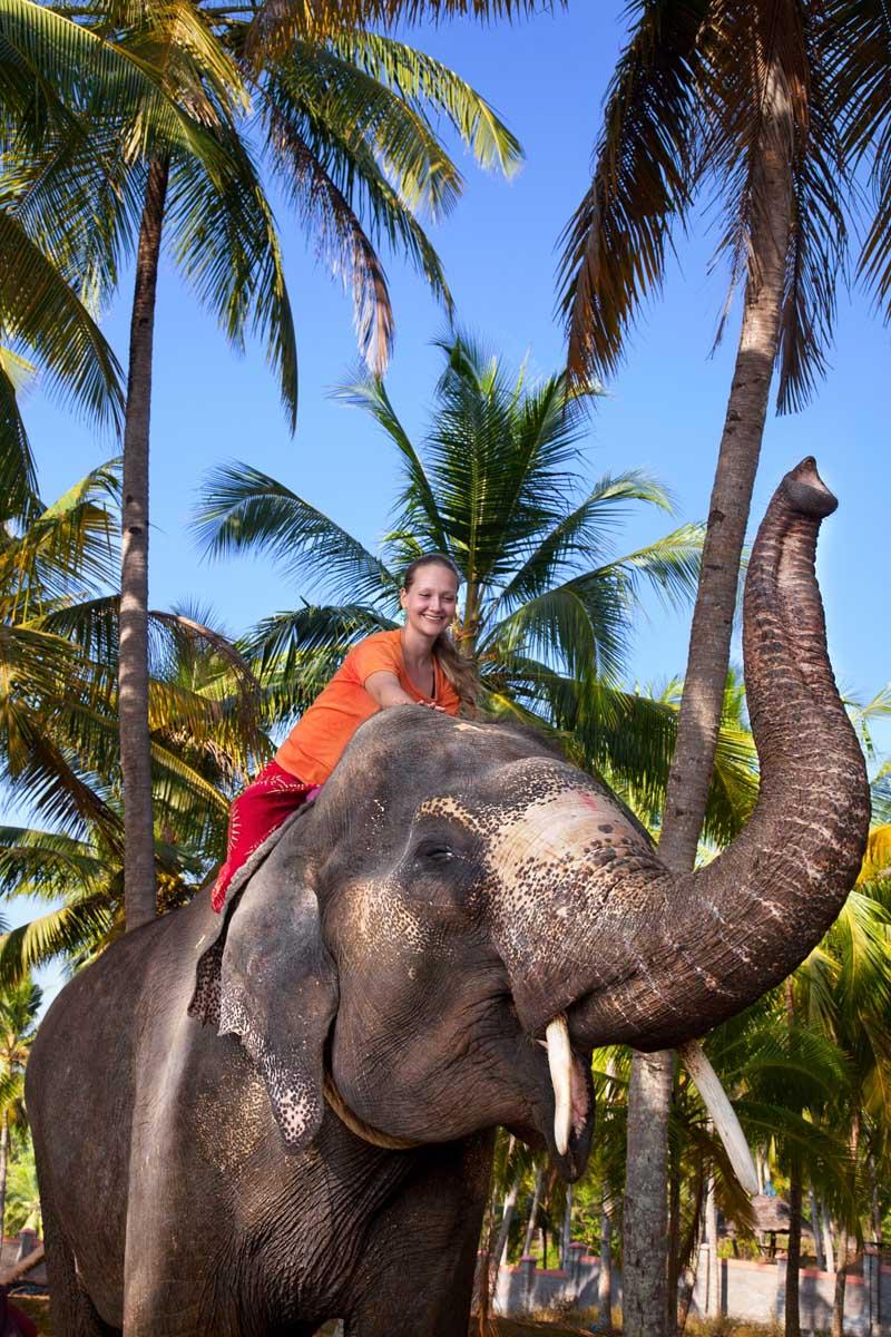 Elefantenreiten in Kerala