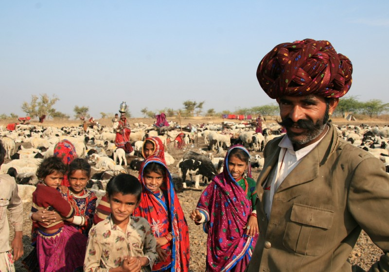 Hirten in Rajasthan