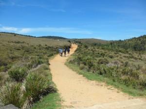 un camino fácil para pasear en Horton Plains