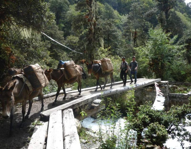Sur les routes du Bhoutan