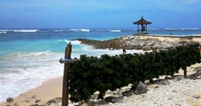 An elusive beach in Bali