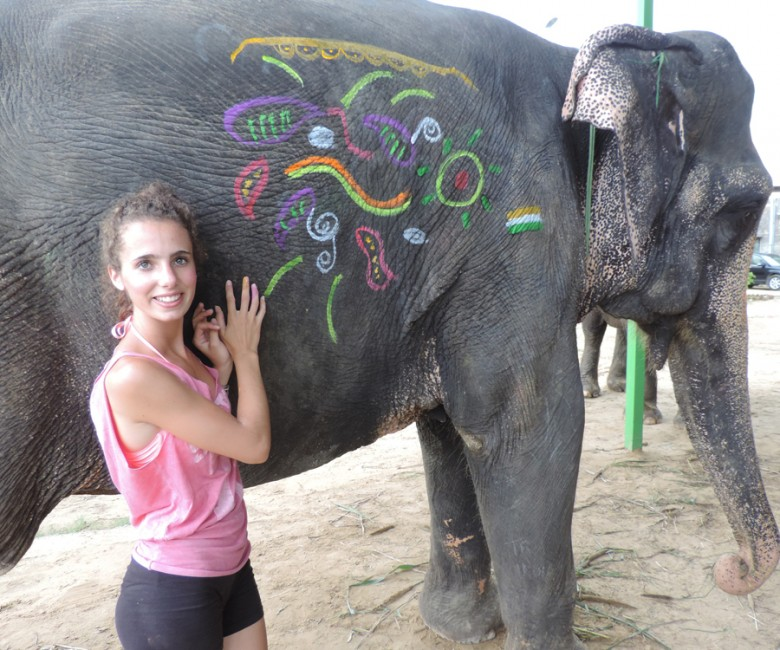 Avec les éléphants