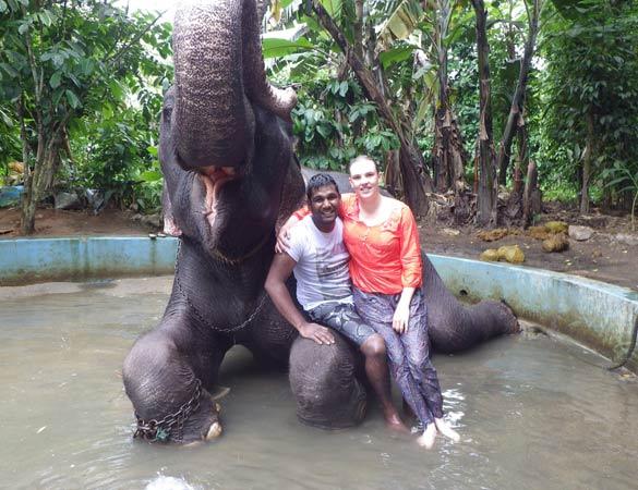 Le bain avec les éléphants
