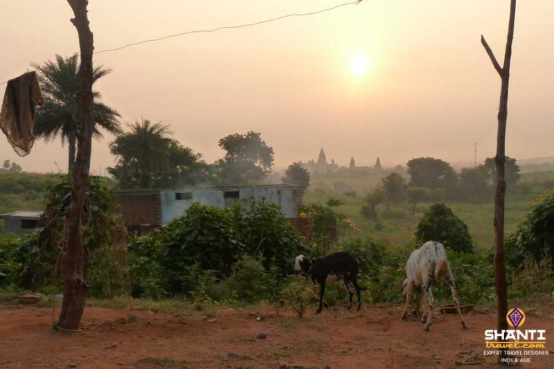 A morning in Orchha