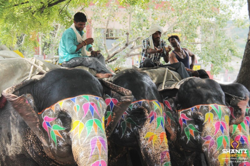 Elephant rides in Amber Fort