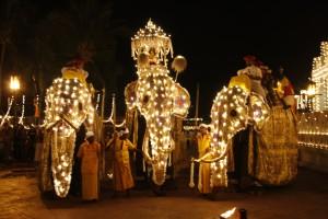 Esala Perahara Festival Kandy