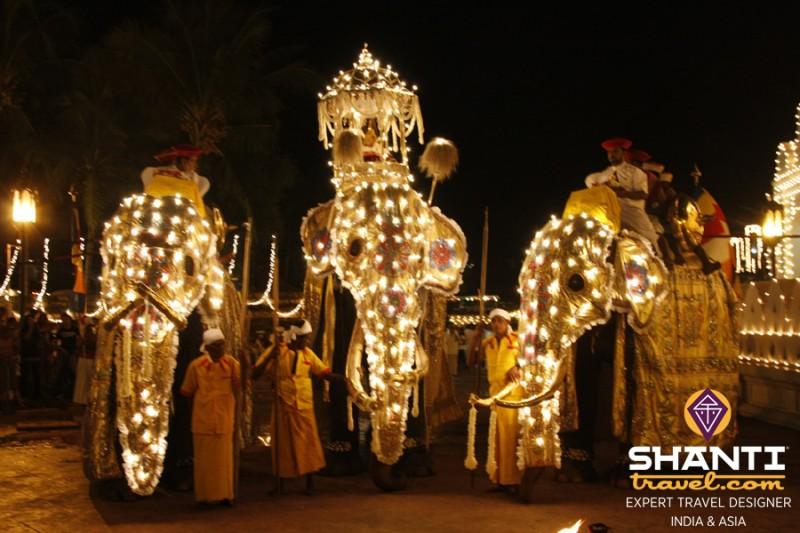 Eléphants Esala Perahara Festival