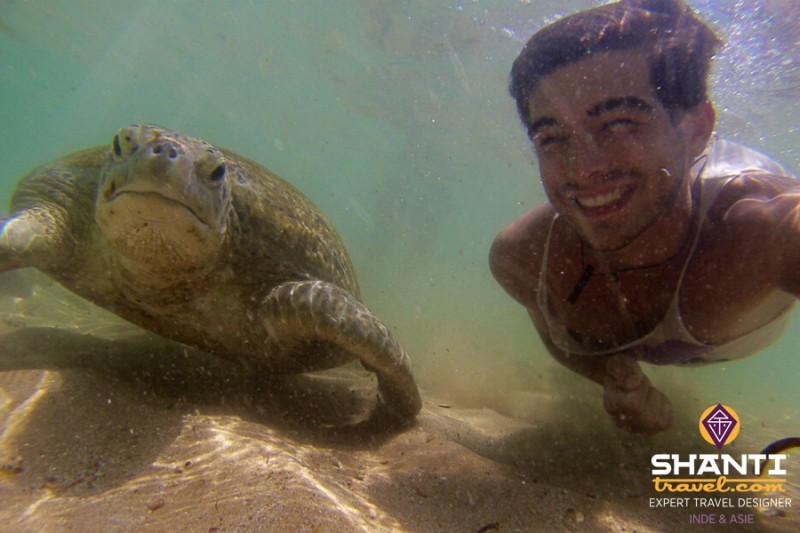 nager avec les tortues au sri lanka
