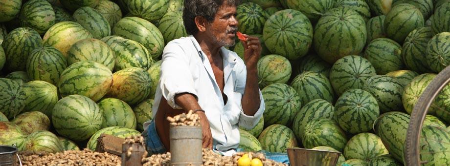 Watermelons in Pondicherry