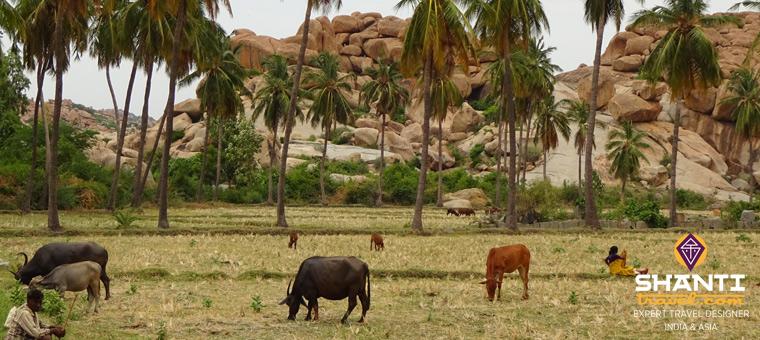 Hampi Inde du Sud