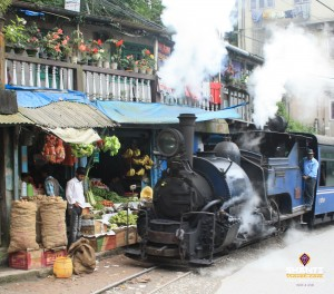 Toy-train-trip-in-darjeeling