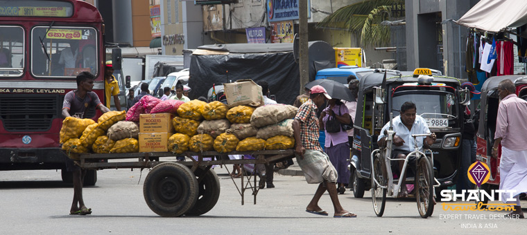 Voyager avec un chauffeur au Sri Lanka