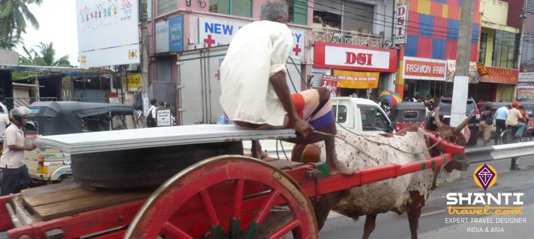 Sur la route du Sri Lanka