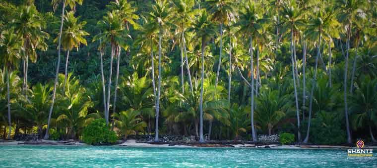 Togian Island in Sulawesi