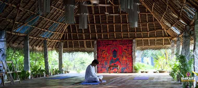International yoga festival 2015 in Rishikesh