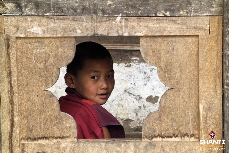 Petit Moine du Bhoutan