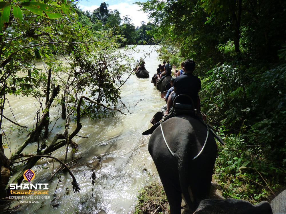 Traversée de rivière à dos d'éléphant