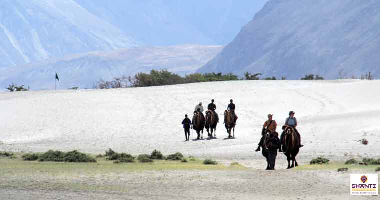 Cold Desert Safari in Nubra