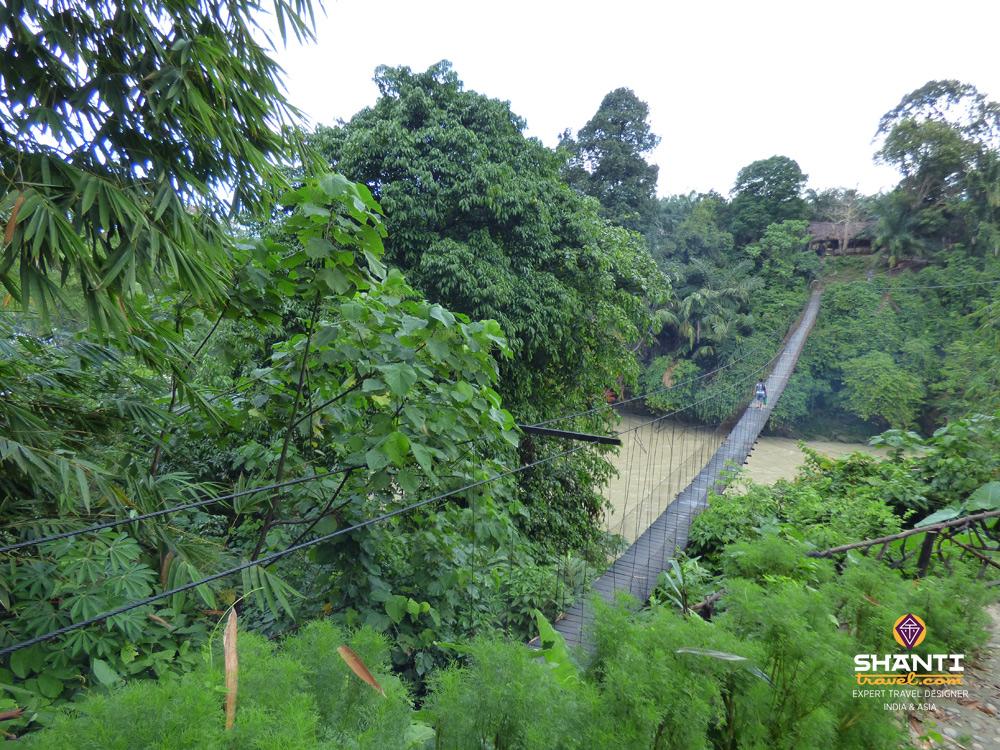 Pont de Tangkahan