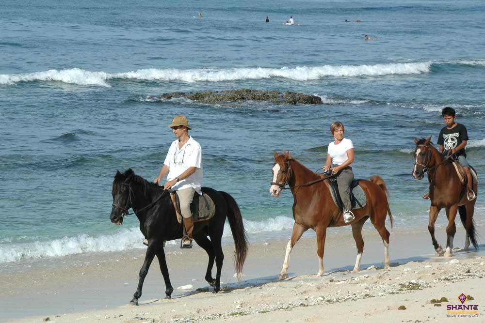 Horseback Riding Lombok