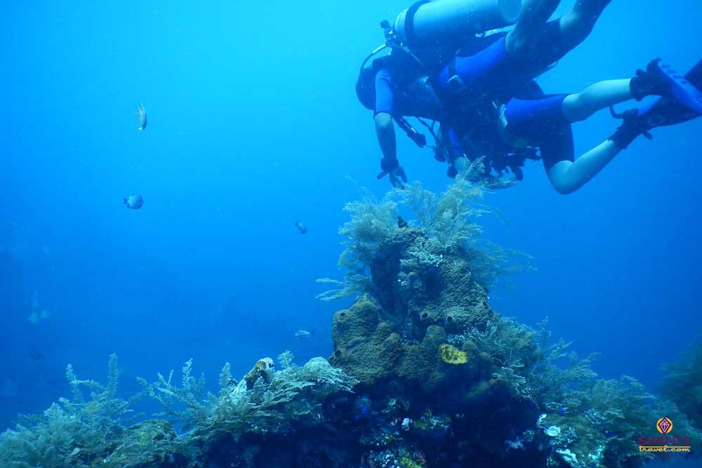 Scuba Diving in Tulamben Indonesia
