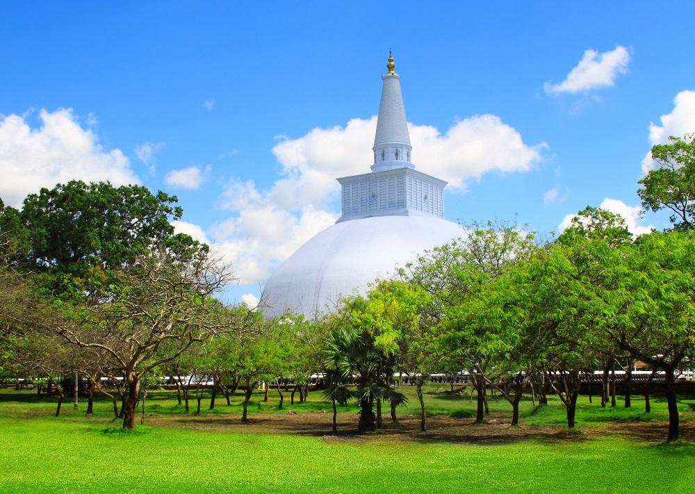 Sri Lanka Anuradhapura Dome des arbres