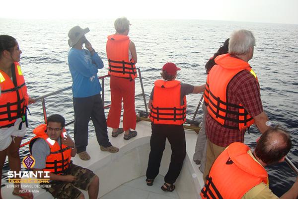 Sri Lanka baleines