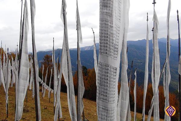 Prayer flags close to Chele La
