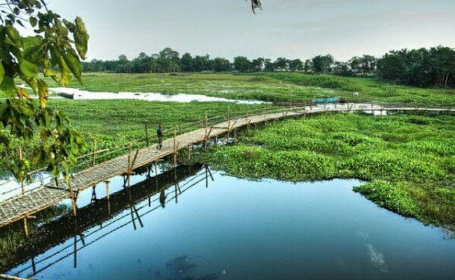 bamboo-bridge-in-majuli