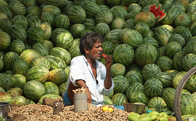 Tamil Nadu_Chennai_Fruit seller_Watermelon