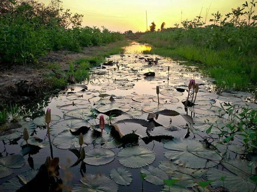 green village - voyage au vietnam - shanti travel