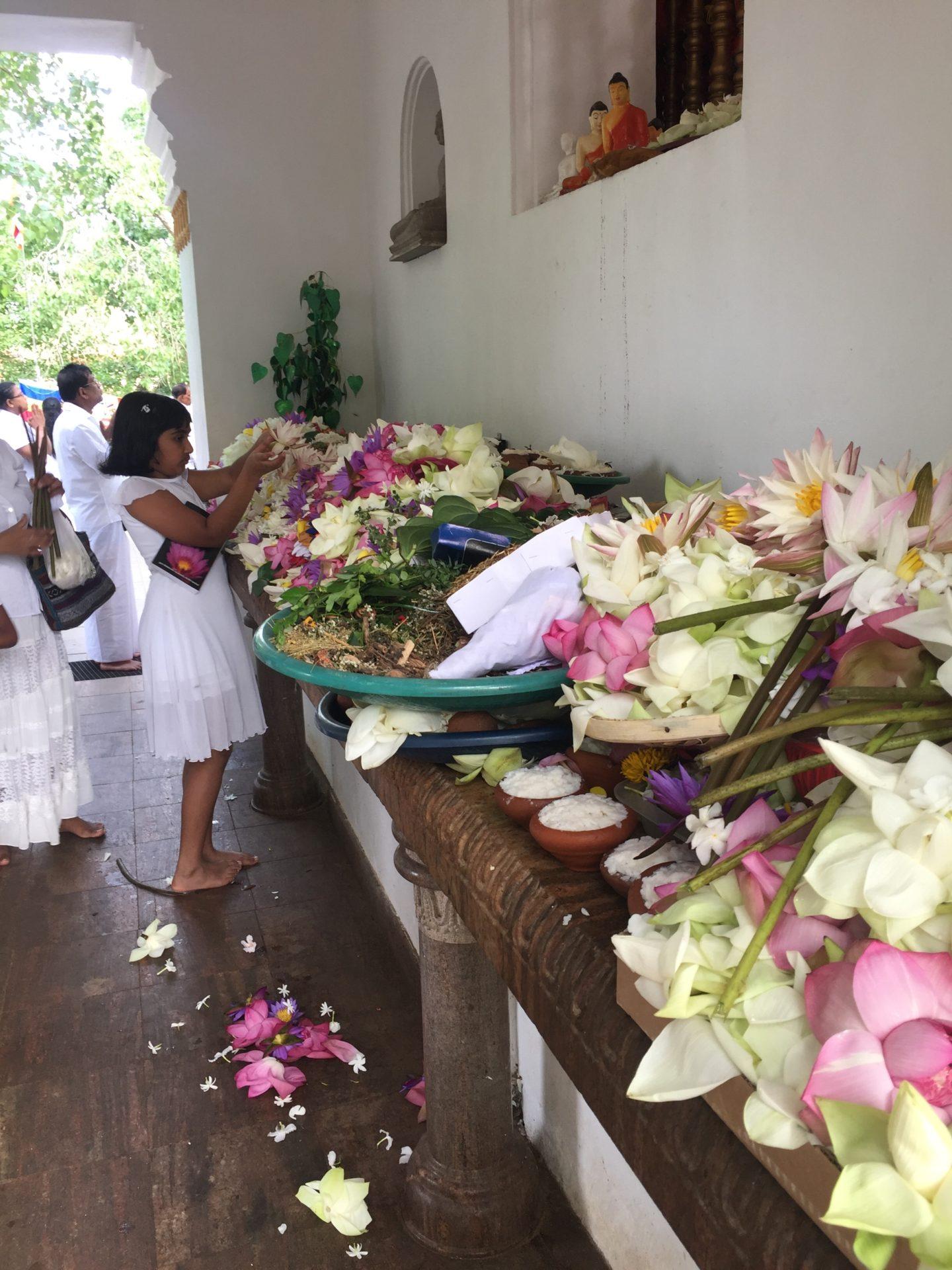 Sri Lanka Reiseblog Anuradhapura