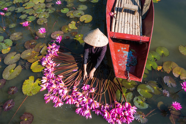 voyage vietnam spécial expats - où partir au printemps