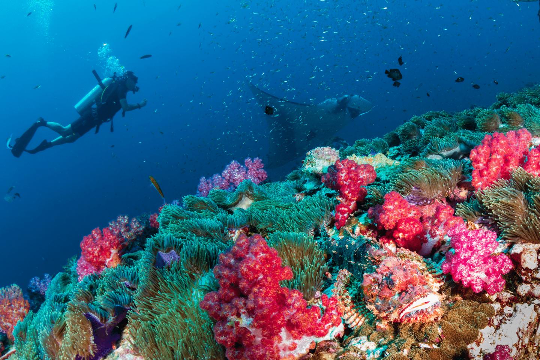 voyage-bali-plus-beaux-sites-plongée-indonesie-2