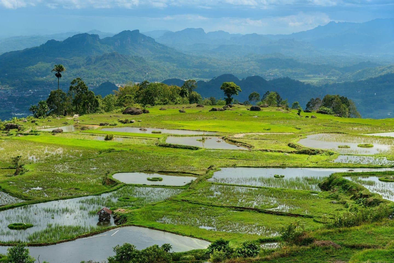 voyage toraja sulawesi meilleures randonnées asie sud est
