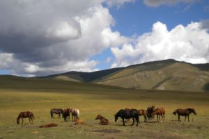 partir en trek en Mongolie