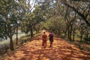 Tongs et Sri Lanka